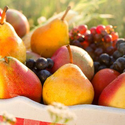 fruit-box-2