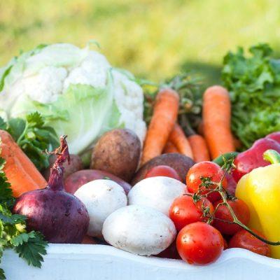 vegetable-box-4